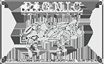 Pignic Bar